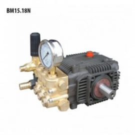 Đầu bơm áp lực cao BTF BM15.18N
